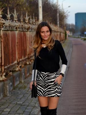 Zebra Skirt Image